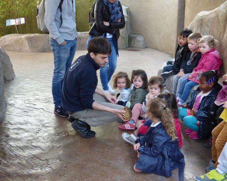 La Visite De L'Aquarium De Saint Malo